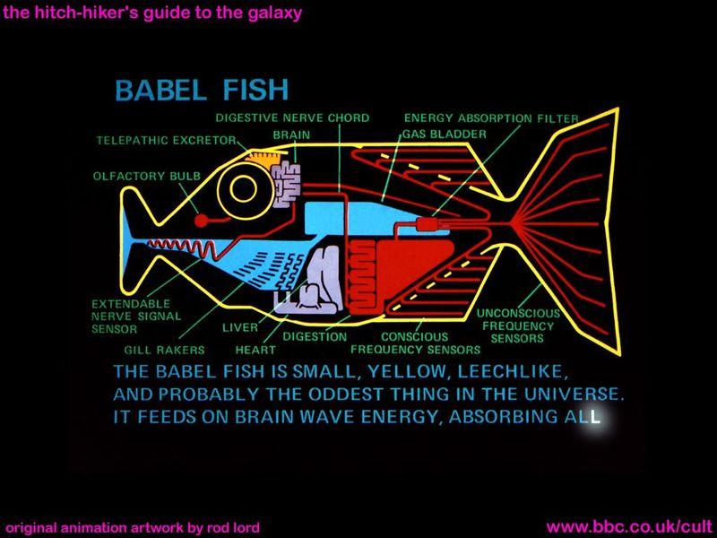 Babel11